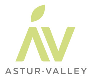 AsturValley